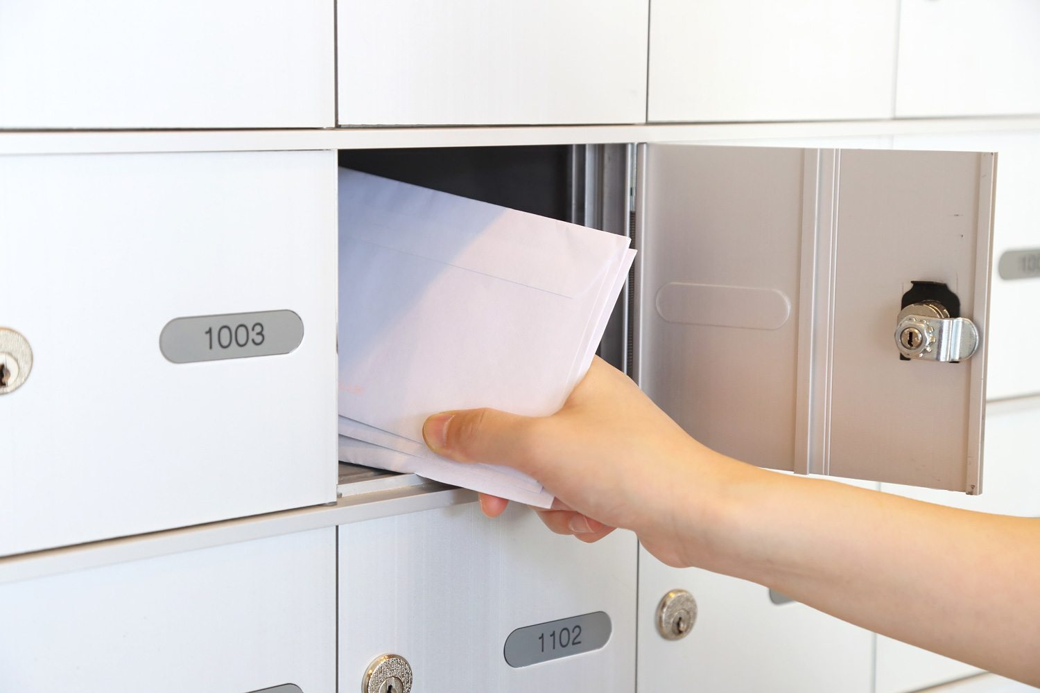 How shredding your junk mail helps you avoid identity theft | Papersavers